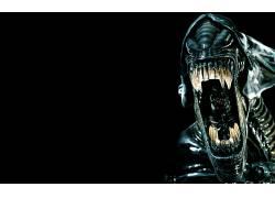外星人(电影),Xenomorph,生物,视频游戏,电影,黑色的背景,科幻