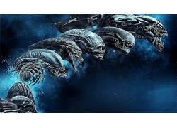 外星人(电影),外星人:复活,普罗米修斯(电影),facehugger,Xe