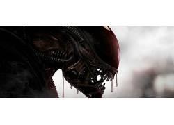 外星人(电影),电影,Xenomorph634614