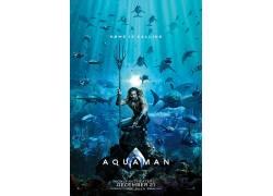 了Aquaman,DC漫画,正义联盟,华纳兄弟,DC宇宙,鲨鱼,电影海报67562