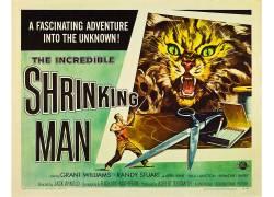 令人难以置信的缩小的人,电影海报,B电影,psychotronics114749