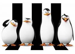企鹅,马达加斯加(电影),电影,马达加斯加的企鹅41171