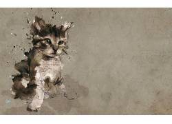 动物,宠物,猫,小猫,数字艺术,绘画,文本,小动物,纸,油漆飞溅24991