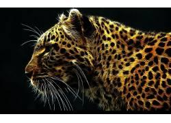 Fractalius,动物,豹(动物),数字艺术,艺术品60532