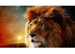 Fractalius,狮子,明星,大猫,动物32564