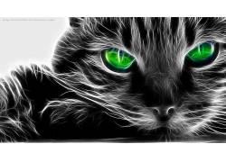 Fractalius,猫,绿眼睛,动物55404