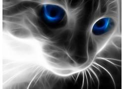 Fractalius,猫,蓝眼睛,动物71814