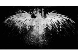 ORO,咪咪,数字艺术,鹰,动物,极简主义,黑色的背景11704