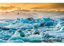 冰岛,冰,山,云,性质,鸟类,动物156124