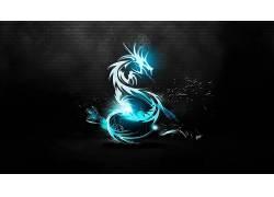 动物,Kali Linux134448