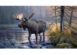 麋鹿,动物,驼鹿580768
