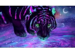 虎,水,绿眼睛,氖,动物594153