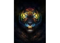 虎,艺术品,乔纳斯乔迪克,云,野生动物687024