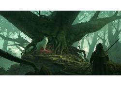 男人,引擎罩,狼,树木,动物,根,幻想艺术,森林,马修多布里奇655720
