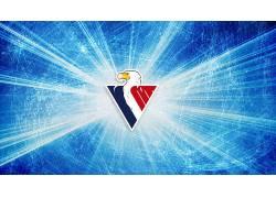 动物,鸟类,鹰,数字艺术,冰球,Slovan Bratislava,商标,冰,三角形6
