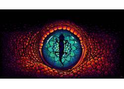 野生动物,数字艺术,眼睛428325