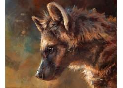 毛茸茸,动物,鬣狗,数字艺术424702