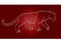 红,动物的眼睛,豹,抽象669974