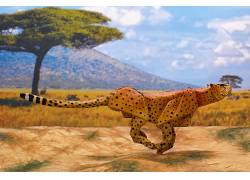 艺术品,折纸,纸,动物408155