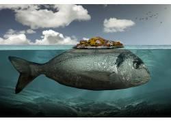 艺术品,数字艺术,超现实主义,水下,动物,鱼,鸟类,岛,屋,云,岩,海,