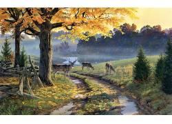 性质,绘画,路径,动物,树木,鹿372720