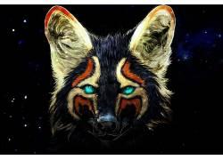 狐狸,动物,蓝眼睛,数字艺术,空间576278