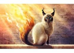 猫,动物,艺术品,火594077