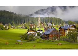 建筑,镇,建造,奥地利,木,屋,教会,村庄,性质,树木,森林,薄雾,路,
