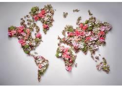 世界,花卉,世界地图313988