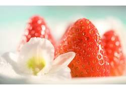 摄影,宏,水果,餐饮,花卉,草莓329759