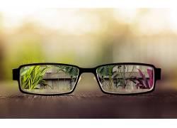 眼镜,植物,玻璃,景深,数字艺术,背景虚化9273