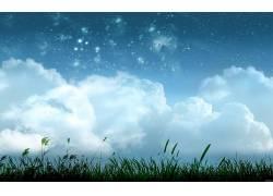 数字艺术,植物,太空艺术,天空,云,明星15768图片