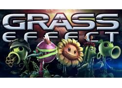 数字艺术,植物,植物大战僵尸,视频游戏,质量效应,草246001图片