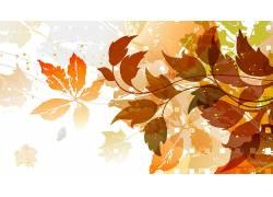 秋季,树叶,艺术品,植物61123