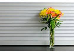 摄影,花卉,花瓶,花束317702