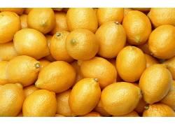 柠檬,植物,餐饮324994