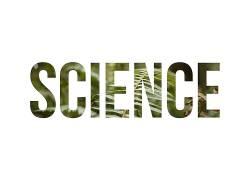 科学,植物,壁纸,活版印刷148873图片