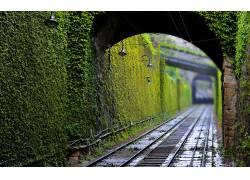 摄影,铁路,隧道,绿色,植物,灯,景深646747