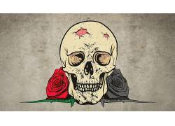 数字艺术,画画,头骨,玫瑰,牙,花卉,荆棘,简单的背景267309