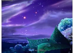 植物,明星,水滴,天空71518