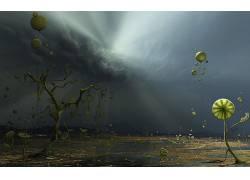 数字艺术,超现实主义,植物,树木,云,气球,太阳光线681477