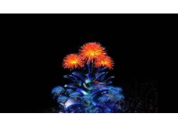 数字艺术,黑色的背景,极简主义,花卉,树叶,泛着,蒲公英,迷幻28220