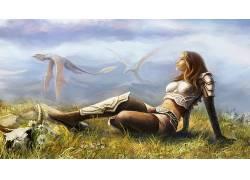 幻想艺术,龙,妇女,数字艺术,绘画,壁纸,飞行,战士,草,花卉,丘陵12图片