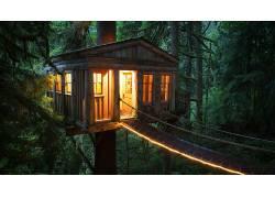 树屋,在户外,舒适,暖,树木,植物,桥,壁纸,绿色,灯火,门,窗口,棚屋