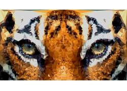 动物,虎,低聚,眼睛,数字艺术178892
