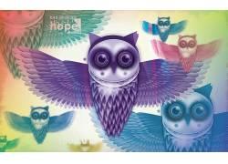 抽象,数字艺术,猫头鹰,动物162309