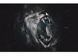 抽象,狮子,艺术品,动物,数字艺术2528