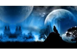 动物,狼,轮廓,幻想艺术62558