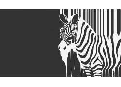 斑马,极简主义,单色,艺术品,简单的背景,动物,条码186973