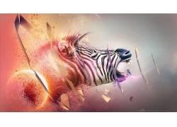 斑马,破灭,动物,数字艺术,形状,亚当Spizak62600